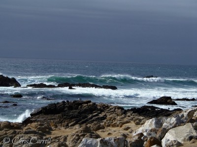 Travel Tuesday: Visiting the Oregon Coast