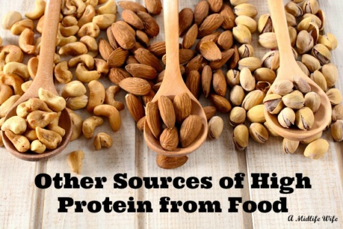 Other Sources of High Protein from Food
