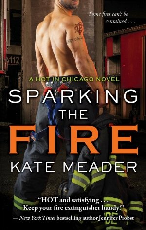 SPARKING THE FIRE by Kate Meader Blog Tour