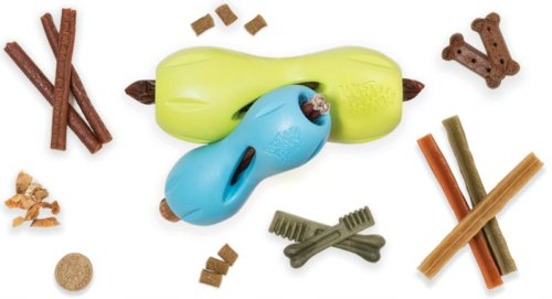 Entertaining and Interactive Dog Toys for Your Pooch