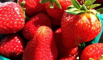 Farmers Market Finds for April