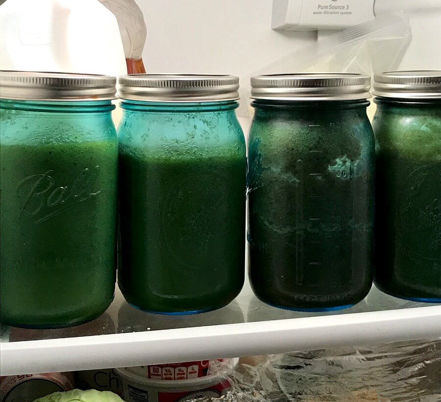 No Excuses: Juice Prep for the Week and Recipe - amidlifewife.com