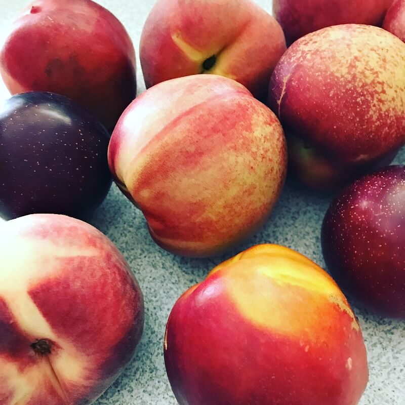 Farmers Market Finds for July - Stone Fruits